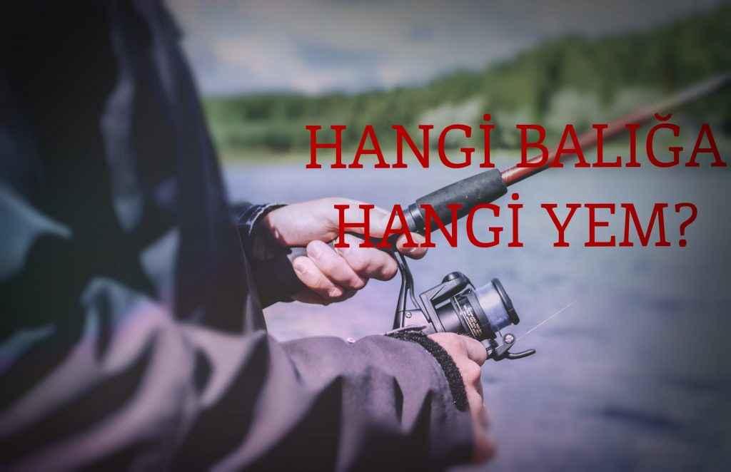 hangi-baliga-hangi-yem