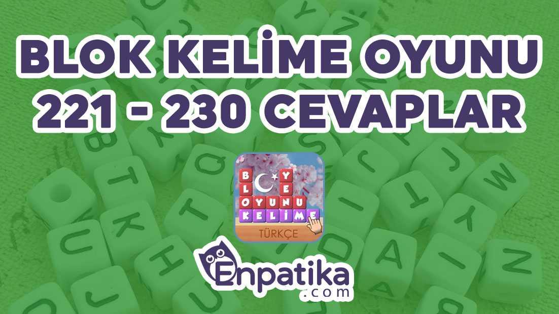 Blok Kelime Oyunu 221 - 230 Cevapları